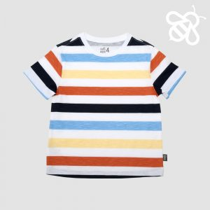 Multistripe Navy/Brown